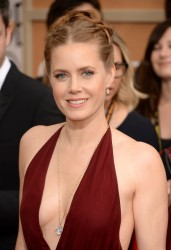 Amy Adams - 71st Annual Golden Globe Awards in Beverly Hills 1/12/14