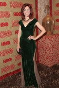 Carrie Preston - HBO's Post 2014 Golden Globe Awards Party held at Circa 55 Restaurant in L.A.  12-01-2014   2x 6e3ad9300957974