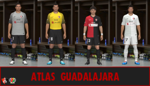 Download Atlas de Guadalajara GBD 2013-14 Kits by ABIEL