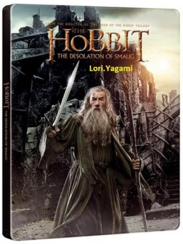 The Hobbit The Desolation of Smaug 2013 BRRip AC3 x264 - PLAYNOW