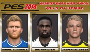 Download PES 2014 European Mini FacePack Vol 5 by Hawke