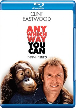 Any Which Way You Can 1980 m720p BluRay x264-BiRD