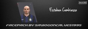 Download Face Esteban Cambiasso PES 2014