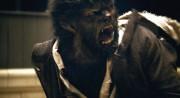 Человек волк / The Wolfman (Бенисио Дель Торо, Эмили Блант, 2010) D7b04d336795896