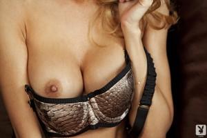 http://thumbnails109.imagebam.com/33842/fe51be338419023.jpg