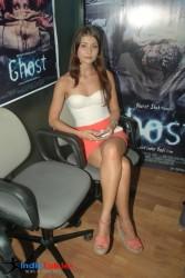 http://thumbnails109.imagebam.com/34333/1f23f9343322422.jpg