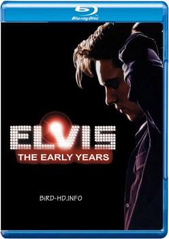 Elvis 2005 m720p BluRay x264-BiRD