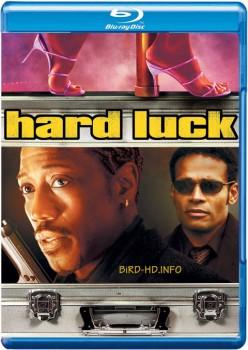 Hard Luck 2006 m720p BluRay x264-BiRD