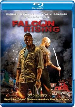 Falcon Rising 2014 m720p BluRay x264-BiRD