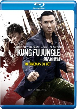 Kung Fu Jungle 2014 m720p BluRay x264-BiRD