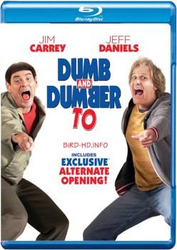 Dumb and Dumber To 2014 m720p BluRay x264-BiRD